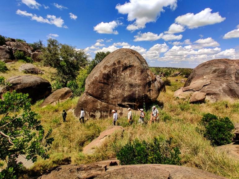 exploring in the kopjes serengeti tanzania