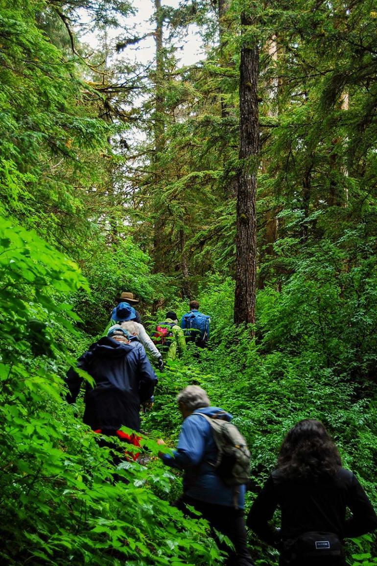 alaska inside passage hikers in forest