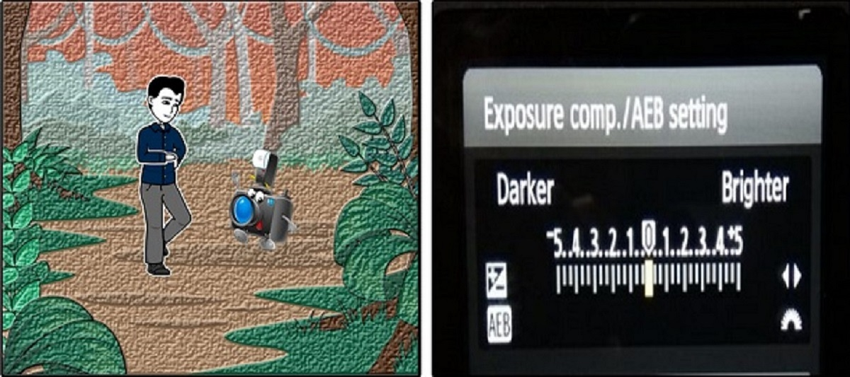 exposure compensation in camera