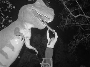 Jonas Studio's NY Worlds Fair Dinosaurs in Hudson 1964 (3)