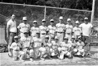 Hudson Moose LL Baseball Team 1968