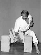 Mas Oyama School of Karate Hudson 1977 (5)