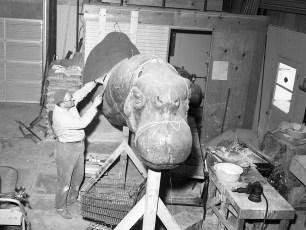 Paul Jonas sculpting dinosaurs for 1964 Worlds Fair 1963 (1)