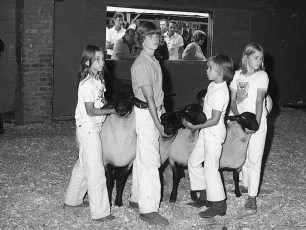 Col. Cty. 4H Sheep Show 1975 (1)