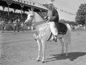 CMH 1963 Quarter Horse Show Fundraiser at Col. Cty. Fair Grounds (4)