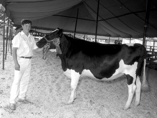 Dutchess County Fair 1968 (11)