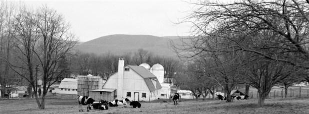 Grant Langdon Farm Copake 1954