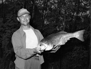 Ray Roberts striped bass Hudson River 1953 (2)