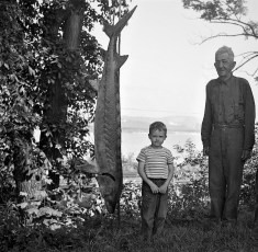 old Earl and young Bob Disher with sea sturgeon Cheviot NY 1950 (2)
