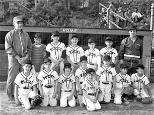 Elk's Little League Teams Hudson 1973 (2)