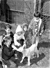 Community Friends Nursery School Pet Day Manorton 1978