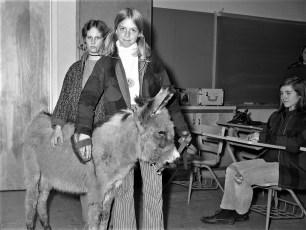 4H Program at Ockawamick Central 1970