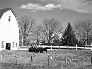 Gene-Sarazen-Farm-Gtown-1949-2