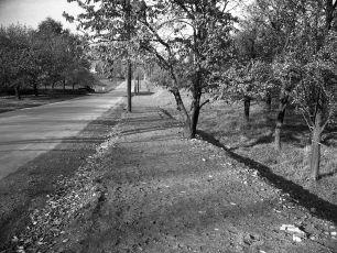 Main Street pre sidewalk looking west toward school 1949