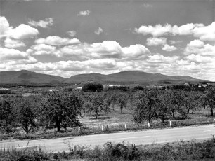 Catskill Mt. view from Rt. 9G G'town 1950s (1)