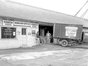 Columbia Farm Supply Rt. 66 Greenport 1959 (2)