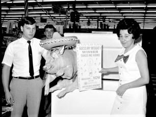 W.T. Grant's Guess my Weight pig contest winner Mrs. Edna Mann 1969