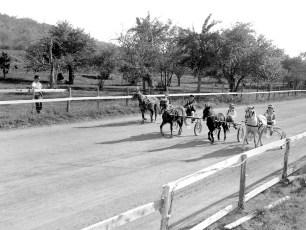 Hugo's Ranch harness races Livingston 1966 (1)