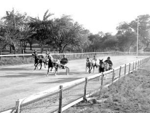 Hugo's Ranch harness races Livingston 1966 (2)