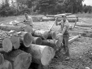 Linlithgo Lumber 1948 2