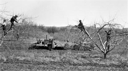 Teyneck Farm Route 82 Livingston 1954 (1)