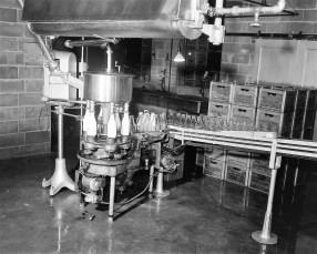 Silver Lake Dairy 1954 2