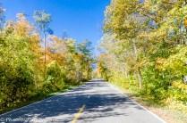 Wilderness Drive.