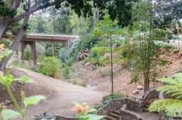 Cabrillo Bridge.