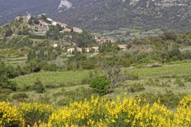 Cucugnan et son moulin, 27 mai 2016