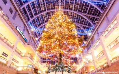 サッポロファクトリージャンボクリスマスツリー