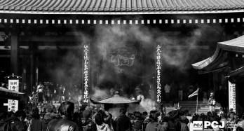 photocarbu.jp_1502_MG_6217