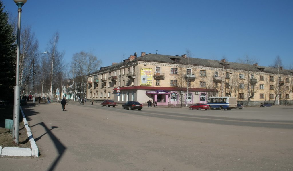 Фото пл. Ленина в городе Нелидово