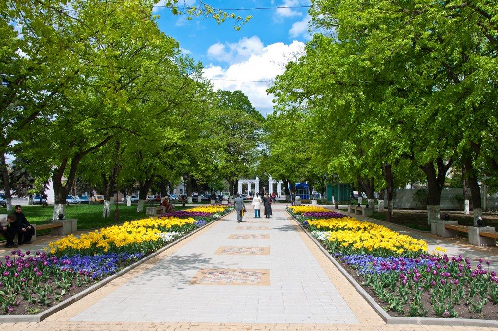 Фото Городской парк в городе Армавир