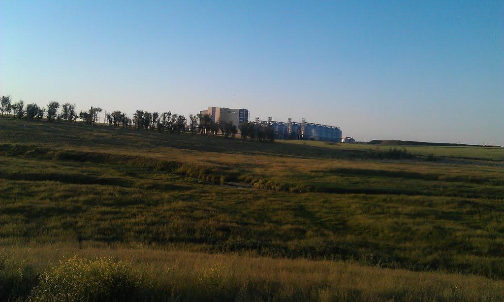 Фото Комбикормовый завод в городе Жердевка