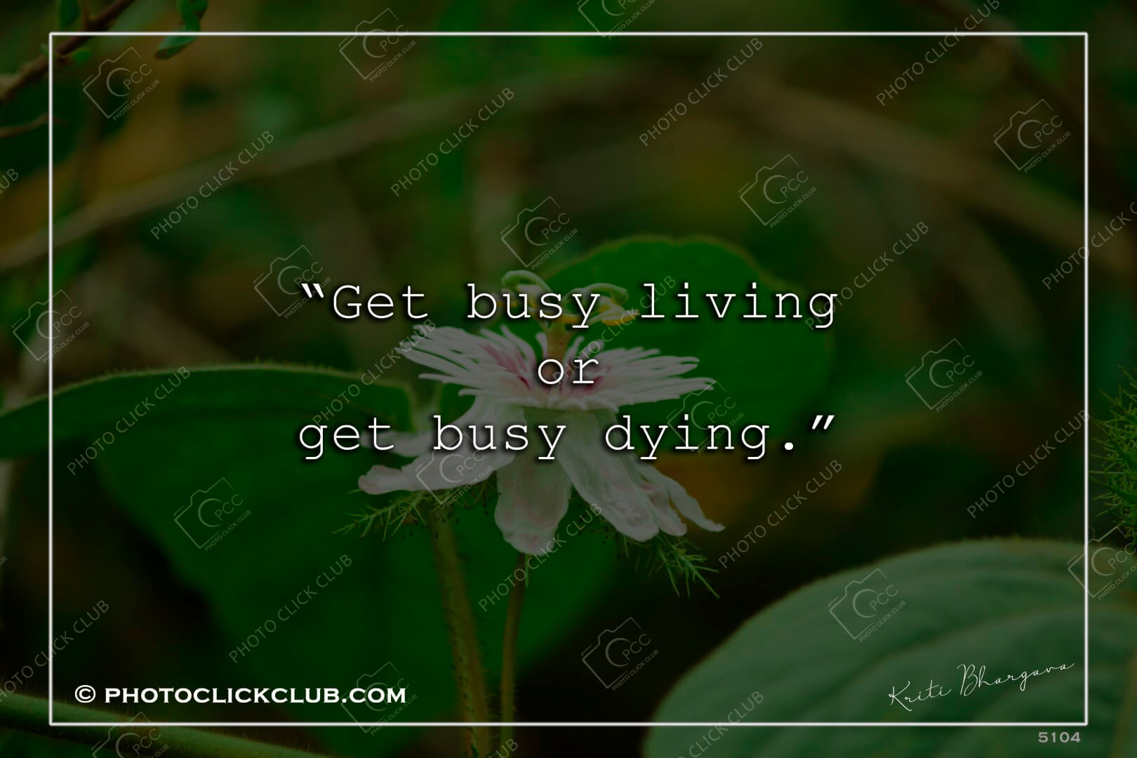 Living and Dying Quotes - by photoclickclub