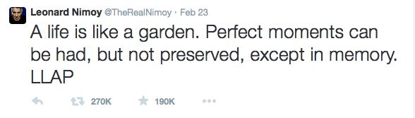 NimoyNikon 2015-03-01 11.16.00
