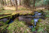 Crystal Creek flowing through Adirondacks