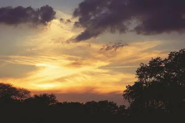Purple Sunset - Tim Gilbreath
