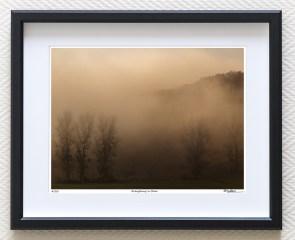 foggy morning fine art print