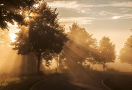 light rays in foggy autumn morning