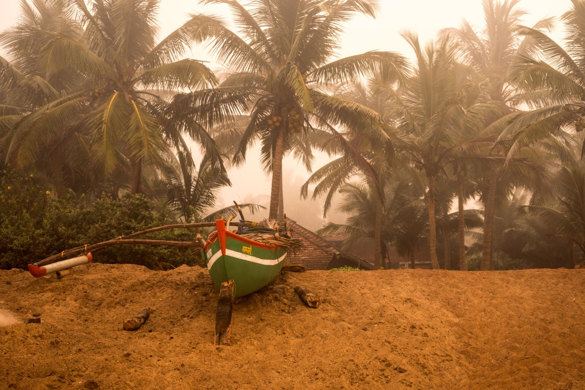 A boat lying on a shore in front of palm trees half covered by a thick fog