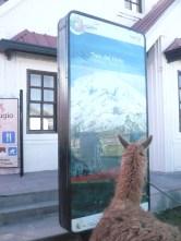 Estacion Urbina (3600meters)