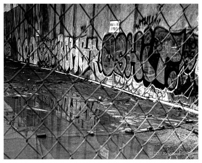 Graffiti, Fence, & Puddle