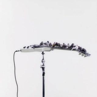 Céleste Boursier-Mougenot, Détail, 2007-2009 Photo numérique, tirage argentique sur papier superbrillant contrecollé sous plexi 110 x 110 cm © Copyright Céleste Boursier-Mougenot, Courtesy galerie Xippas