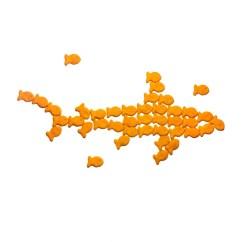 Goldfish Camouflage