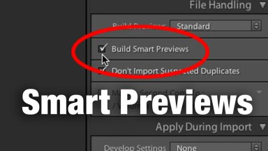 Do Lightroom Smart Previews Really Take Up Much Space?