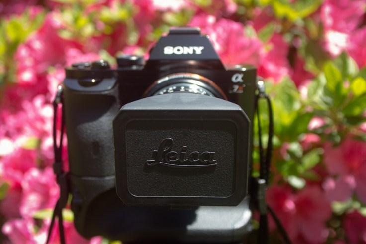 Sony Alpha a7R + Leica 18mm f/3.8 Super-Elmar M