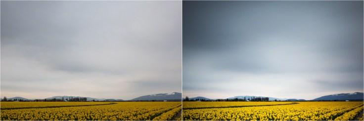 (Left) 1/10 sec; (Right) 130 sec