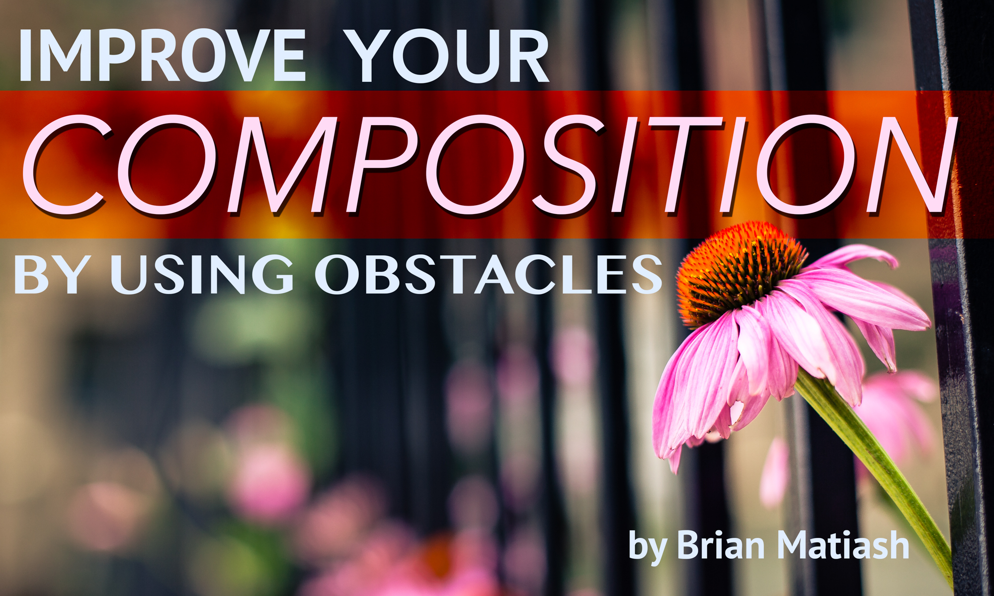 Improve your composition by using obstacles | Photofocus
