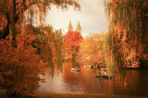 New York Autumn - Central Park Fall Colors at The Lake